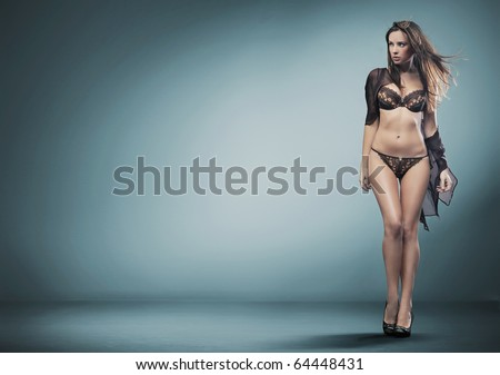 sexy woman in lingerie - stock photo