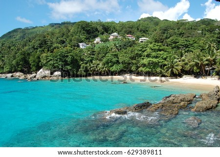Seychelles beach view with palm trees and sandy white beach strip on the background