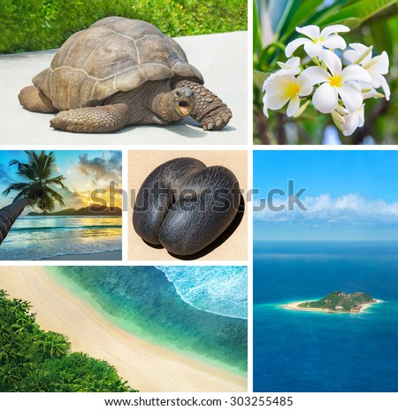 Seychelles scenic views set: endemics giant tortoise and Coco de Mer Sea Coconut, plumeria (frangipani) flower, overlook for Cousin Island and Praslin beach, and Mahe palm beach sunset - stock photo