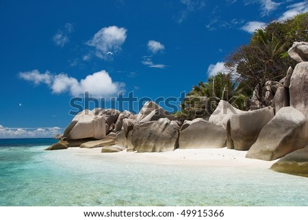 Seychelles stones and palm trees on the bank of azure ocean