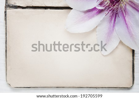 Shabby Chic Background with antique paper and flowers  - stock photo