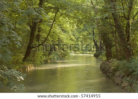 Shade and Low Light over Wood and Stream - stock photo