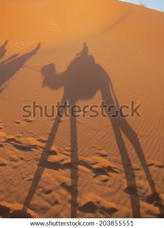 Shadow of camel caravan in Sahara desert, Morocco - stock photo