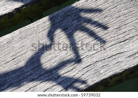 Shadow of hands forming heart on wooden planks.