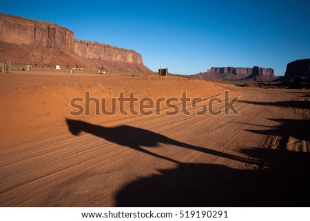 Shadow of horse in Monument Valley