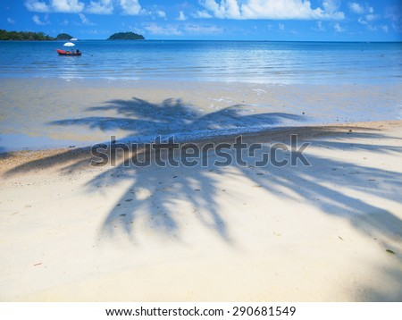 Shadow of palm tree on the beach near the shoreline on the tropical island of Ko Chang in Thailand - stock photo
