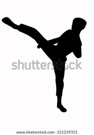 Shadow of Taekwondo on white background - stock photo