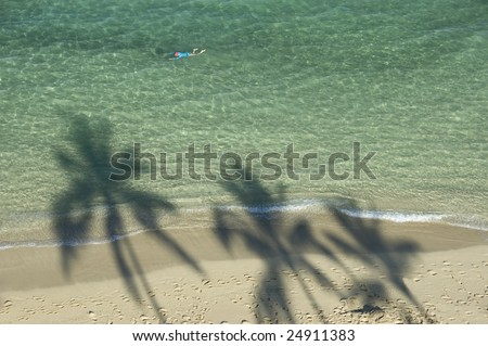 Shadow of three palm trees  at the sandy beach and one swimmer enjoying the clear water.
