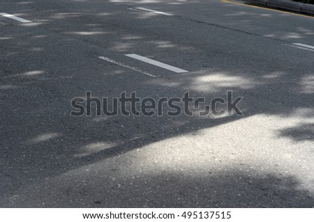 shadow of tree on street
