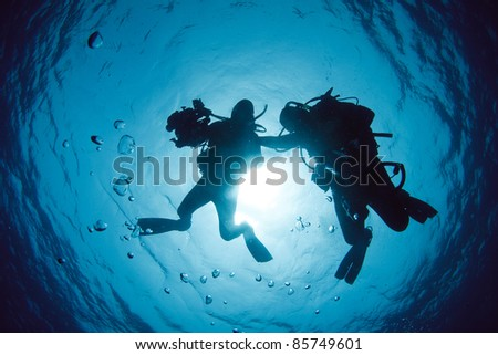 Shadow of Two diver - stock photo