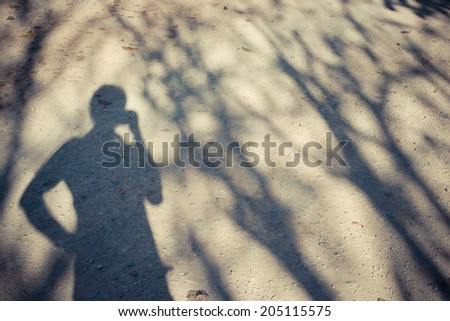 Shadows of tree branches and a man