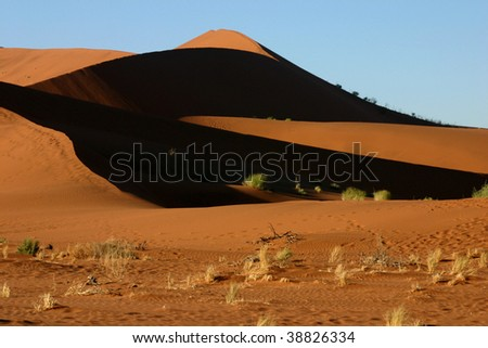 Shadows on the dune of Namib desert