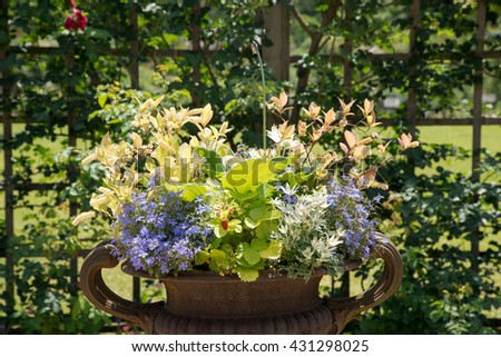 Shady corner of a garden with containers of colorful flowers