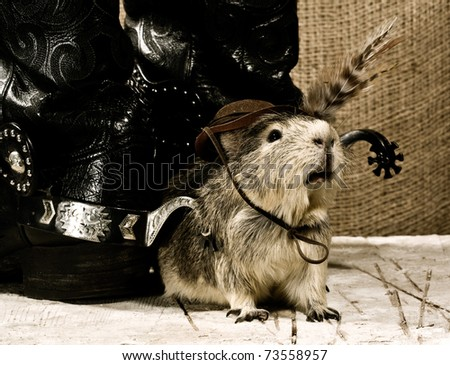 Shaggy guard. Western still life - stock photo