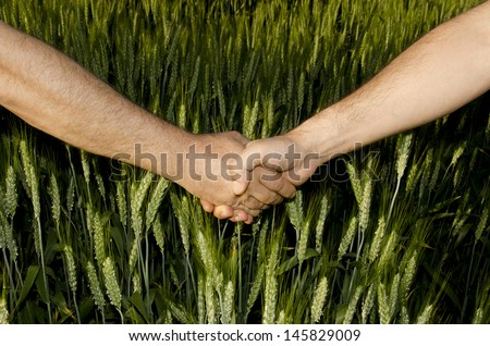 Shaking hands in the field  /  Business Industries  -  Agriculture - stock photo