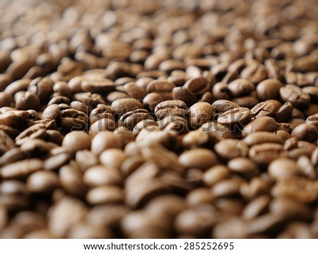 Shallow DOF coffee beans arabica type product - Shallow DOF arabica coffee beans background - stock photo