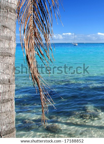 Shallow Lagoon in Moorea - stock photo