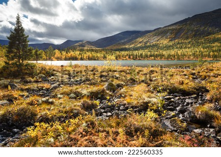 Shallow Polygonal freshwater lake surrounded by autumn colorful greenery - stock photo