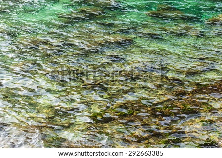shallow waters of a vibrant green tropical sea - stock photo