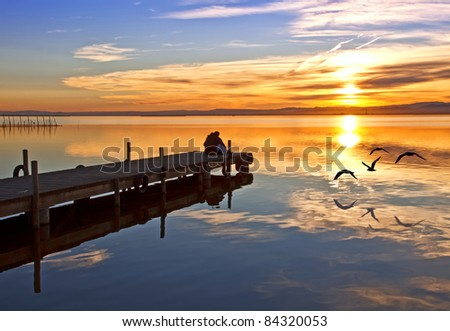 sharing the lake with birds - stock photo