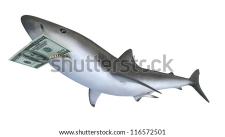 shark biting a dollar banknote, 3d illustration - stock photo