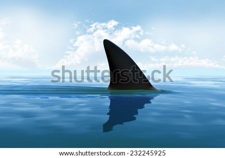 Shark fin above water - stock photo