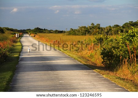 Shark Valley bicycle trail in Everglades National Park - stock photo