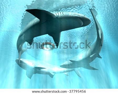 Sharks - stock photo