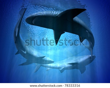 sharks - stock photo