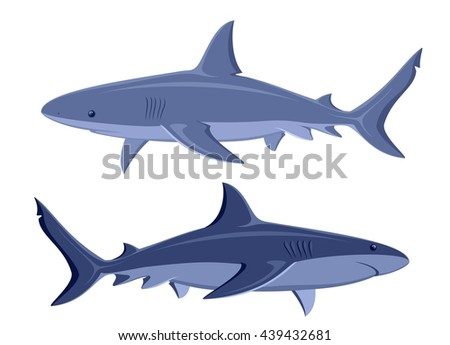 Sharks. Set of two great white sharks isolated on white.  Raster version of the illustration.  - stock photo
