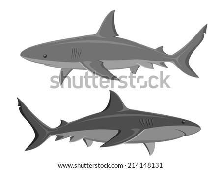 Sharks. Set of two large sharks isolated on white. Raster version of the illustration. - stock photo