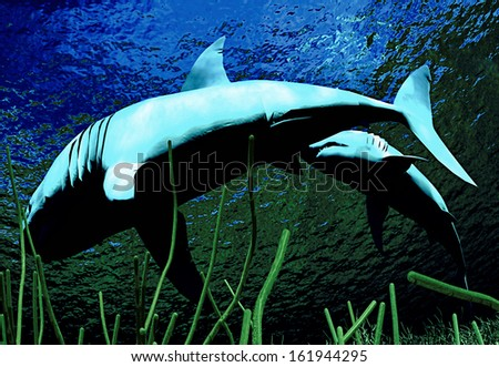 Sharks swimming on the reef - stock photo