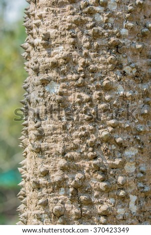 sharpen on wood surface - stock photo