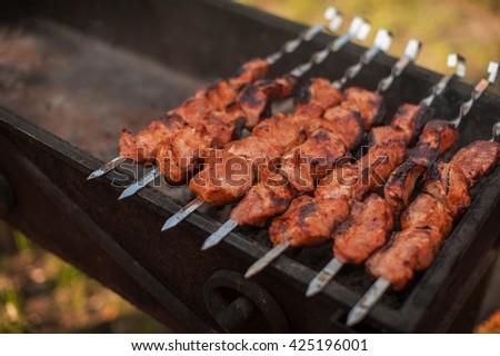 shashlik on a grill