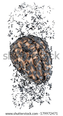 Shattered human brain. Stress concept. Isolated - stock photo
