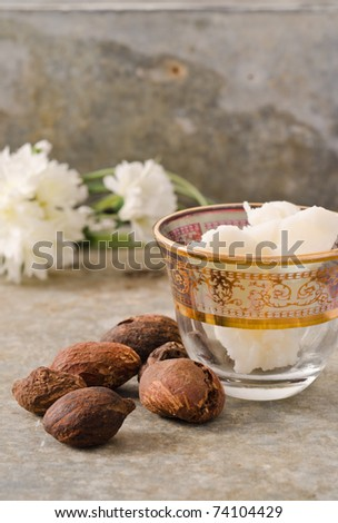 Shea nuts still life with a Moroccan glass filled with shea butter