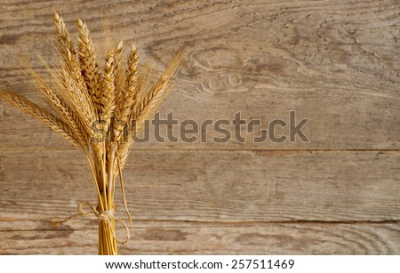 sheaf of barley and wheat on the table - stock photo