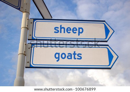 sheep and goats signs - stock photo