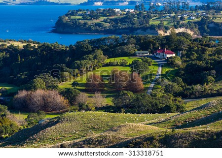 Sheep farm in Auckland rural area, Auckland Region, New Zealand - stock photo