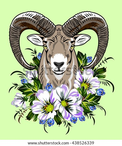 sheep in the wild flower - stock photo