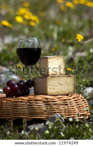 sheese and wine in a vine - stock photo