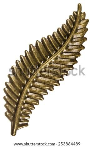 Sheet of fern, decorative element, isolated on white background - stock photo