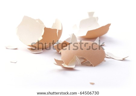 Shell of the egg. Small Pieces. Soft focus. - stock photo