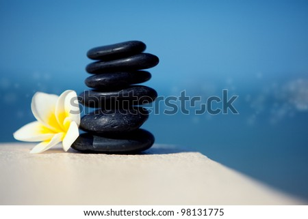 Shell stones and flower frangipani on the beach - stock photo