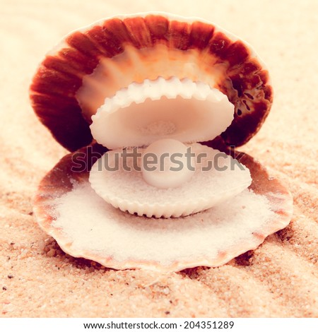 Shell with a pearl  - stock photo
