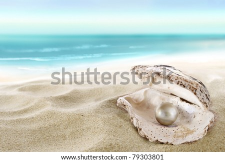 Shell with a pearl inside. - stock photo
