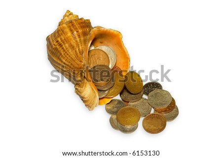 Shell with money on white background - stock photo