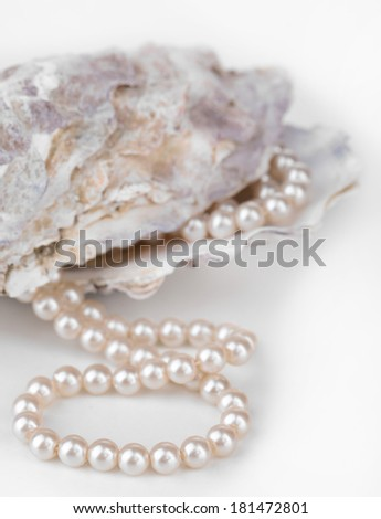 Shell with pearls, isolated on white - stock photo