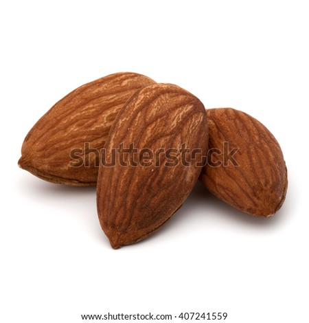 shelled almond nut isolated on white background close up - stock photo