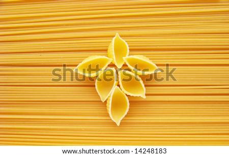 shells and spaghetti - stock photo
